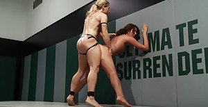 Free Wrestling Pics